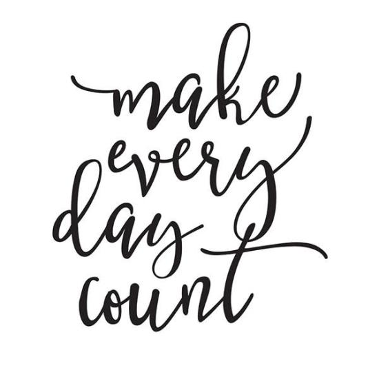 PLANNER_DECAL_-_CARPE_DIEM_LARGE_PLANNER_DECAL_-_MAKE_EVERY_DAY_COUNT_-_WASHIGANG